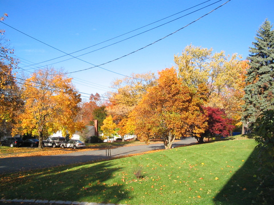 Livingston NJ Offers Arts and an Easy Commute to Midtown NYC