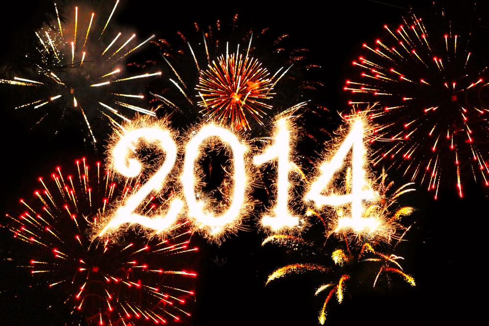 New Year 2014 in Millburn