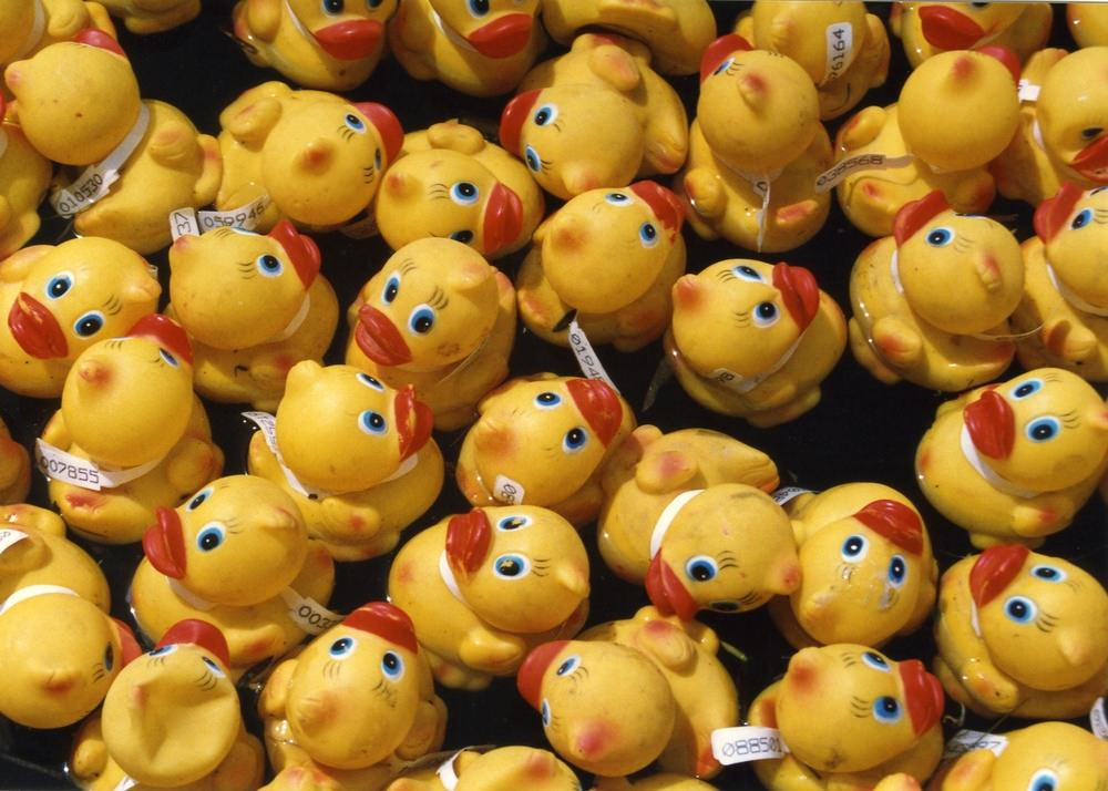 12th Annual Berkeley Heights Rubber Ducky Festival